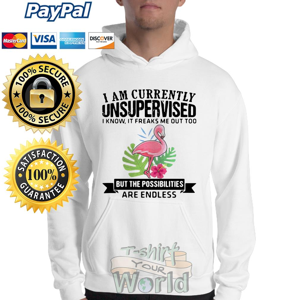 Flamingo I am currently unsupervised I know it freaks the possibilities Sweater