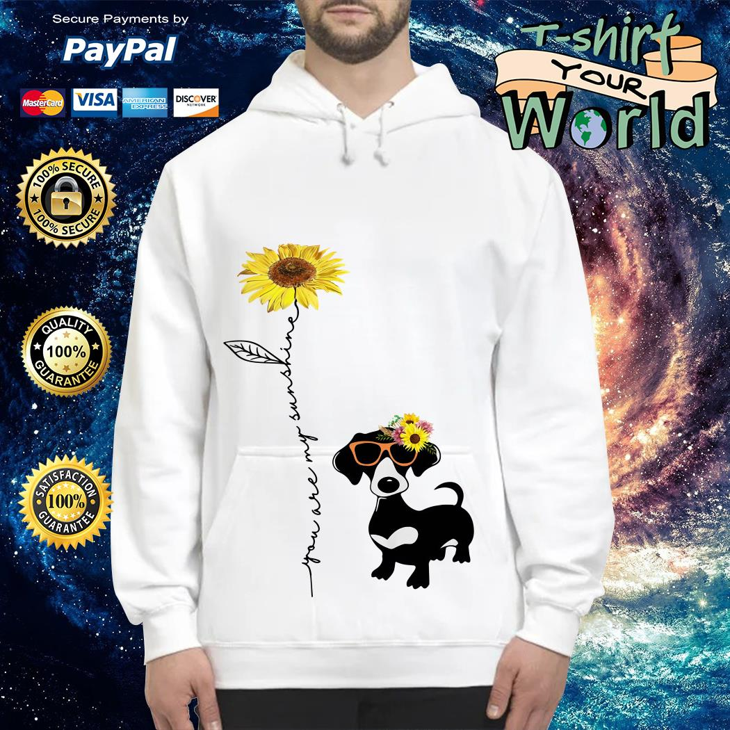 You are my sunshine dachshund sunflower Hoodie